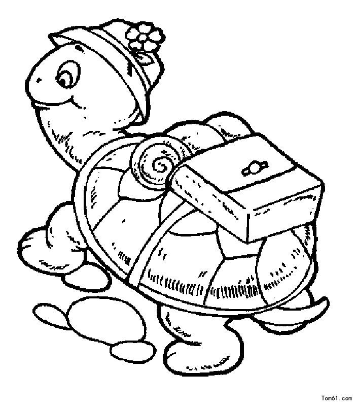 手抄报精美插图:简笔画小乌龟怎么画