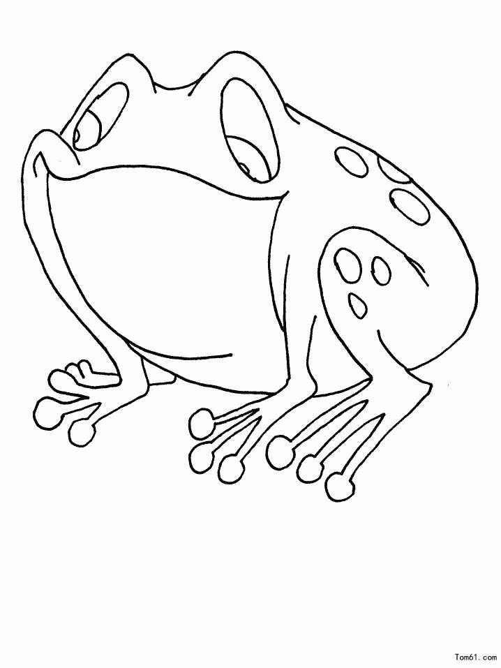 青蛙图片_简笔画图片_少儿图库