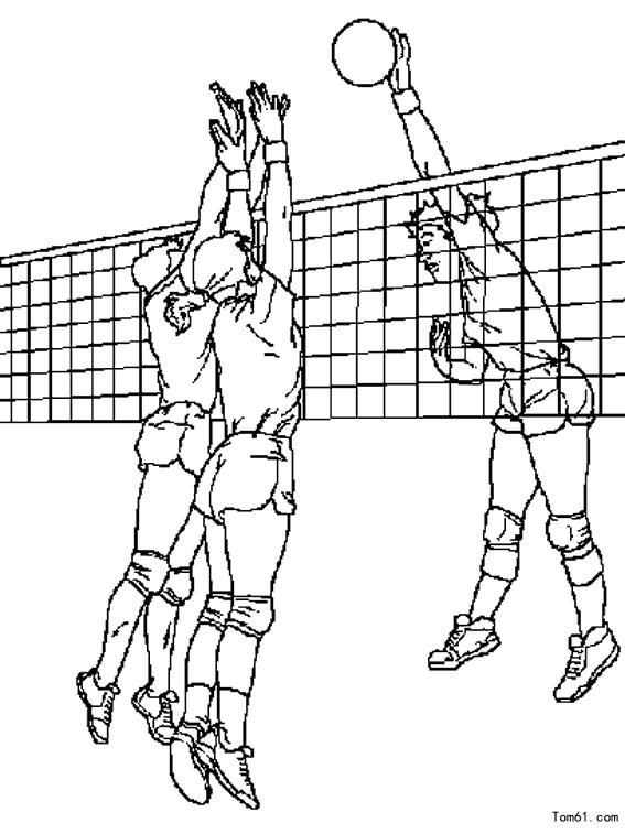 排球图片_简笔画图片_少儿图库_中国儿童资源网
