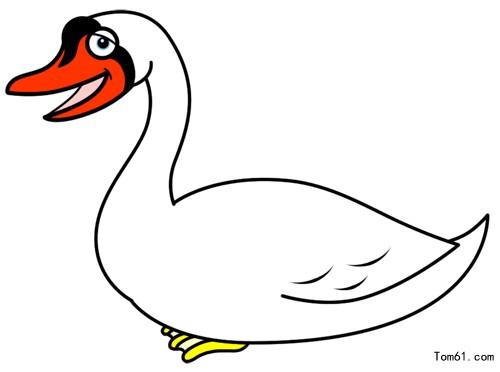 ... :网站首页-- 白天鹅的简笔画