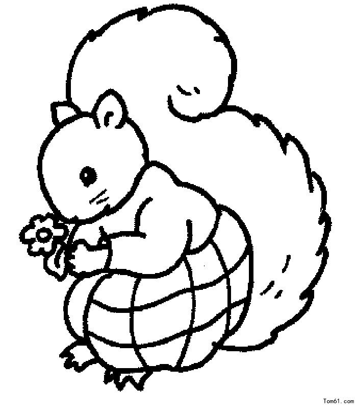 松鼠图片_简笔画图片_少儿图库_中国儿童资源网
