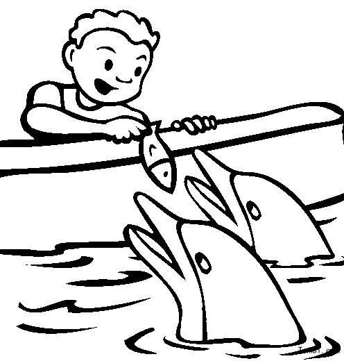 海豚图片_简笔画图片_少儿图库