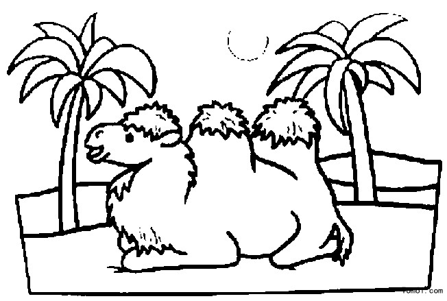 desert oasis coloring pages - photo#11