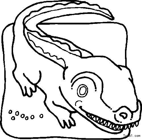 鳄鱼图片 简笔画图片 少儿图库 中国儿童资源网
