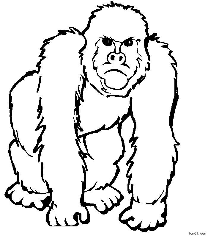 黑猩猩图片_简笔画图片_少儿图库_中国儿童资源网