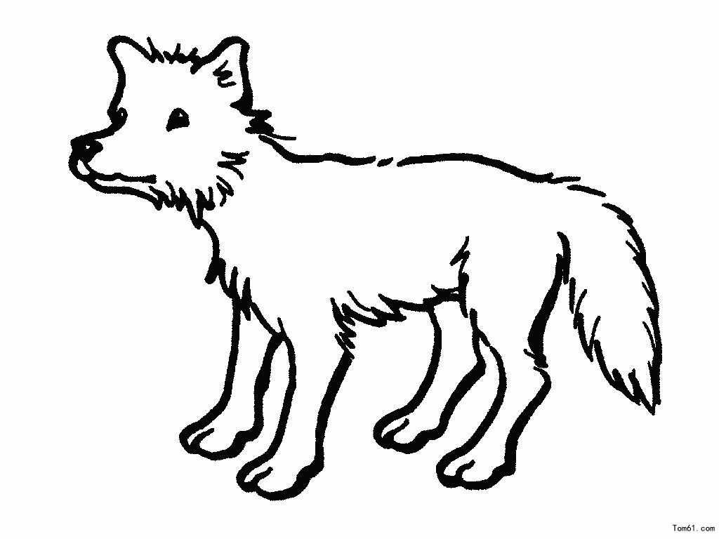狼十字绣图纸