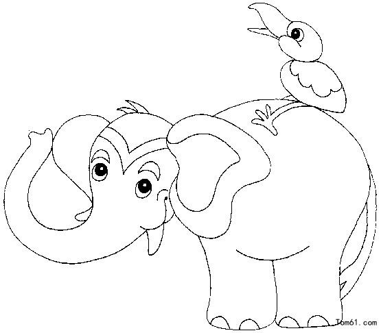 马戏团动物图片_简笔画图片