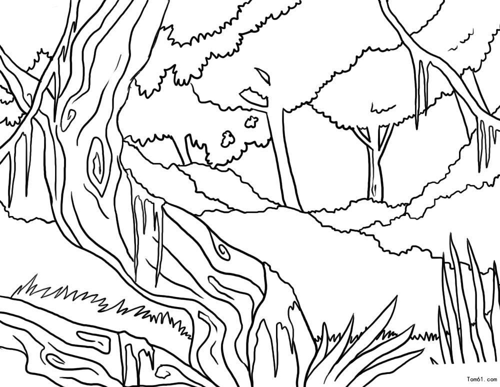 Drawing Lines In Html : 树木图片 简笔画图片 少儿图库 中国儿童资源网